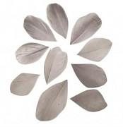 Pierka rezané / 5-6cm / 36ks / sv.sivé