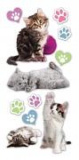 Sticker - Puffy - Kittens / vypuklé samolepky