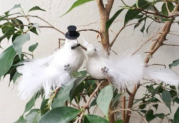 Birds of young married couple / 11cm