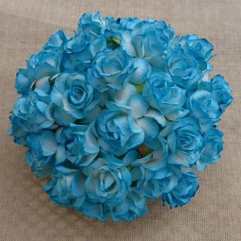 Papierové kvety / Wild Roses 3cm / 10ks / 2-tone Turquoise
