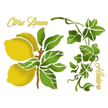 Šablóna / 20x15cm / Lemons