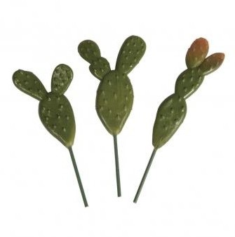 Set of prickly pears / 7,5-10cm / 3pcs