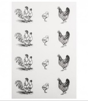 Vodné samolepky / Chicken family / 2ks