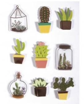 3D samolepky / kaktus