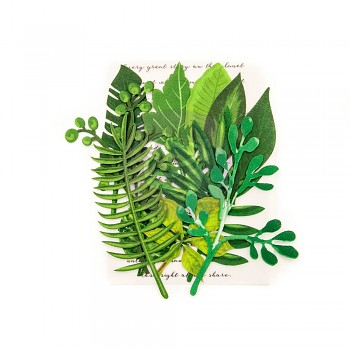 Leaf Embellishments Evergreen / 2,5 - 7,6 cm / 12ks