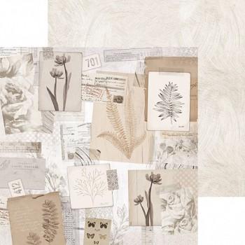 "Scrapbookový papier 12x12"" / Whisper / Organic"