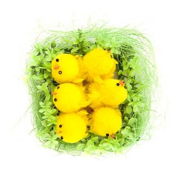 Easter decoration chicks