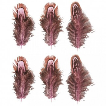 Feathers, 5-10cm, 6pcs, pink/brown