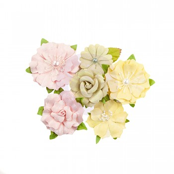 Fruit Paradise Flowers Citrus Twist / 3,8 - 5 cm / 6ks