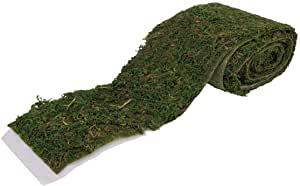Moss ribbon 10cm / 1,8m