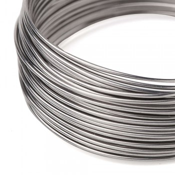 stainless wire 0,6 /5m